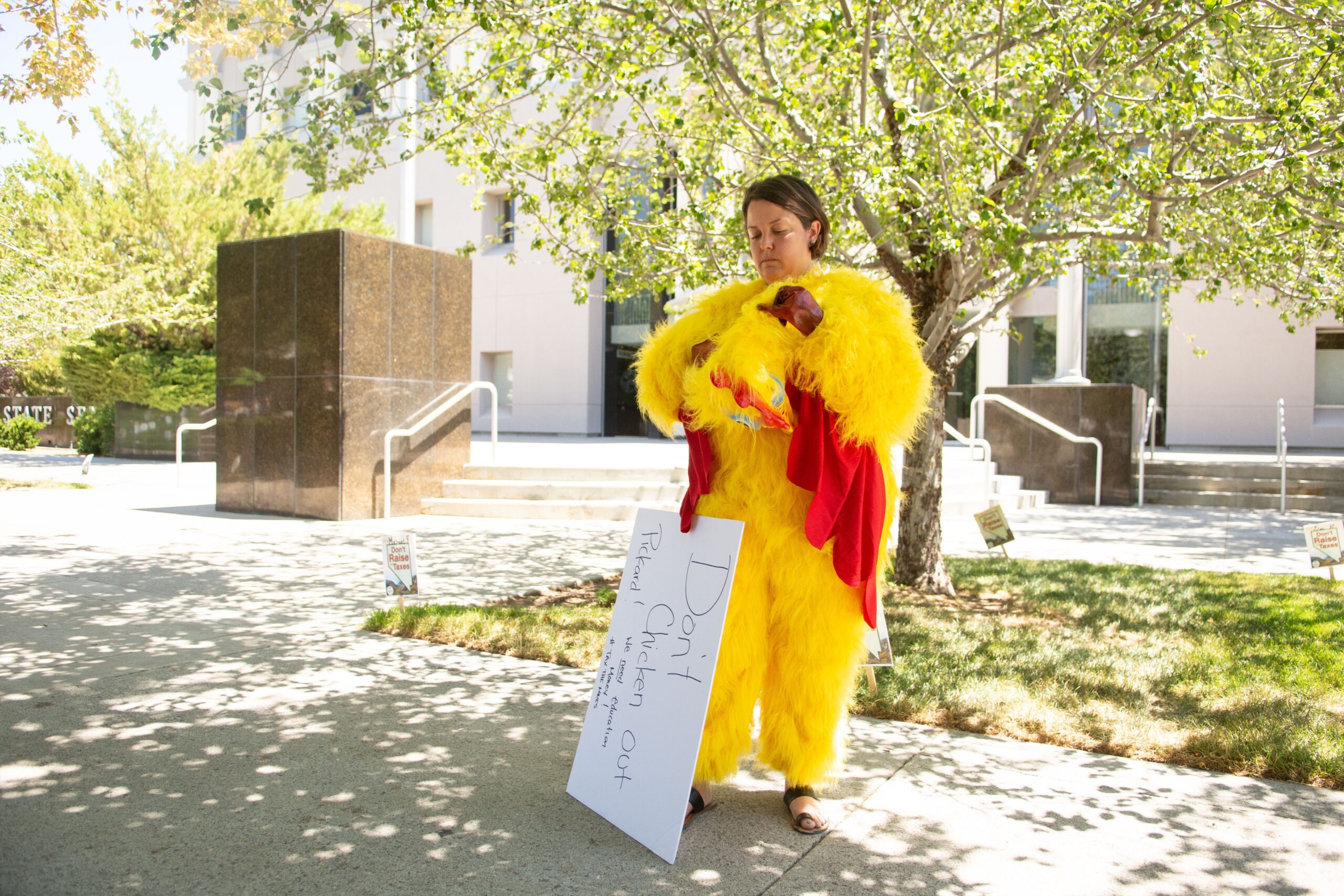 Chicken Lady Comes Home to Roost at the Innovation Zone